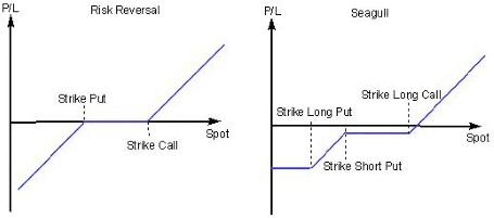 Strategia risk reversal opzioni binarie