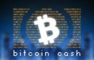 Trading Bitcoin Cash: come investire in BCH
